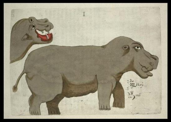Мозамбикский бегемот. Рисунок М. Боима. Илл. из Википедии.